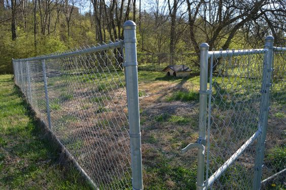 Affordable & Easy Chain Link Fence Makeover Option
