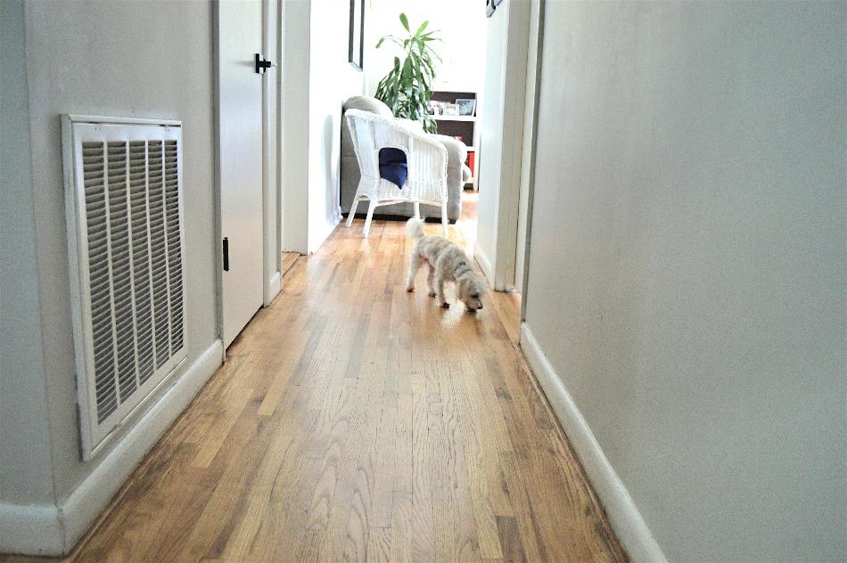hardwood floors update